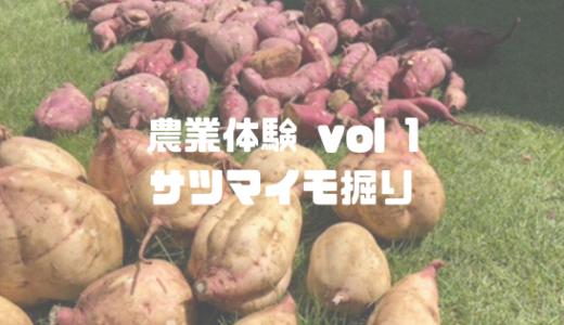子供と農業体験に行ってみた! vol.1  サツマイモ掘りから芋に彫刻アート
